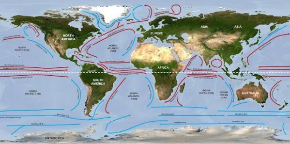warm and cold ocean currents meet the parents
